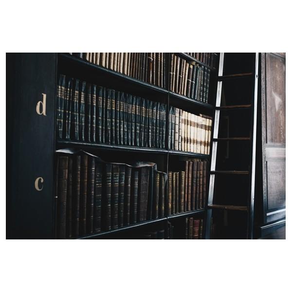 ¿Qué puede hacer una Asesoría Jurídica para tu empresa?